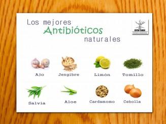 antibioticos naturales centro tandem